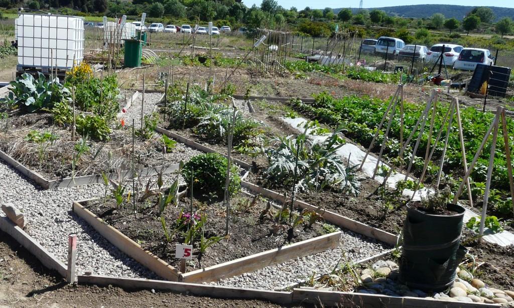 Une inauguration pour des jardins qui ont vite pouss agenda le blog officiel de la ville de - Faire une haie qui pousse vite ...