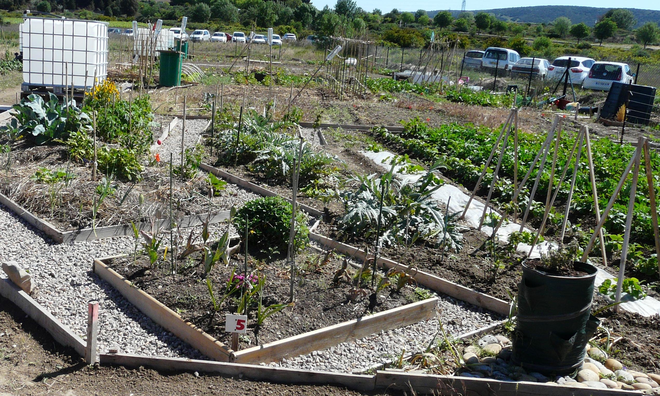 Une inauguration pour des jardins qui ont vite pouss for Terrain olivet