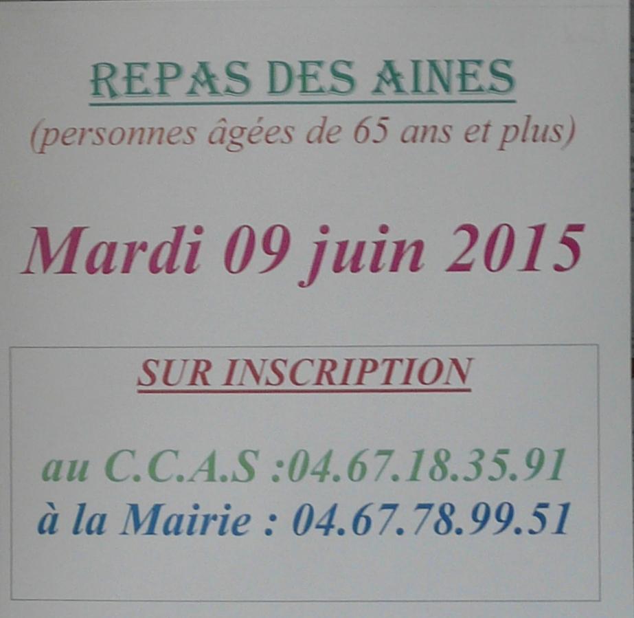 P1510039 (2)