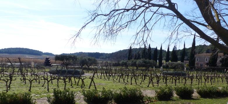 rendements viticoles france histoire