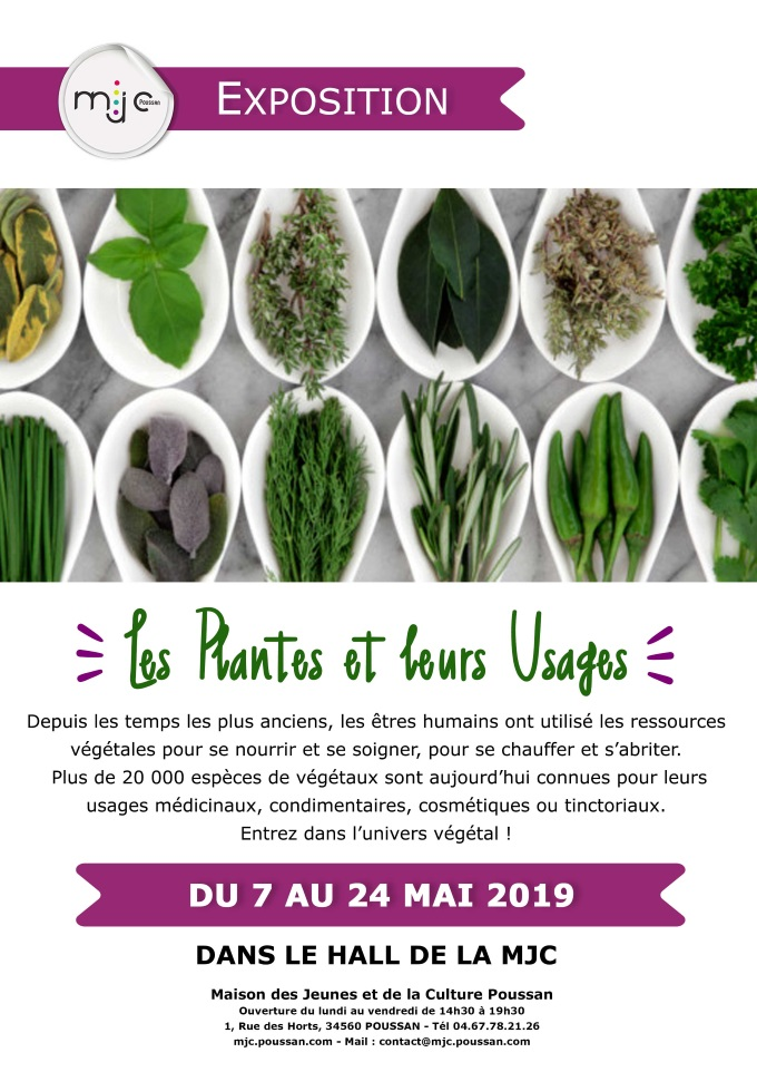 BVCExposition_Plantes_Usages_19