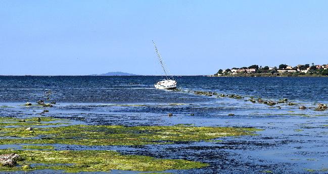 Port Balaruc le vieux 1