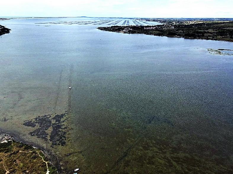 Port Balaruc le vieux 2