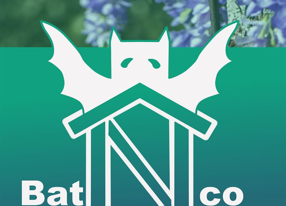 batCapture